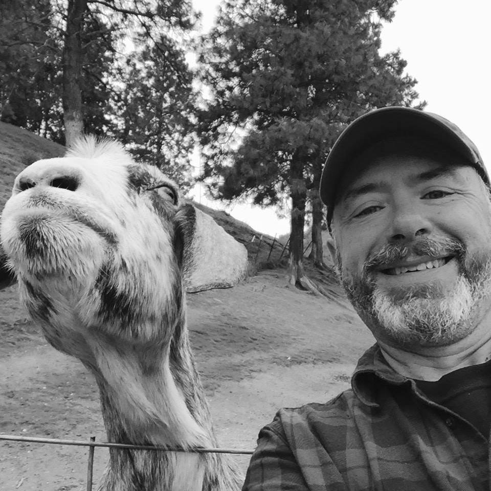 "How a ""Goat"" Helped Me Write Faster"